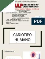 CARIOTIPO HUMANO.pptx