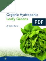 Organic Hydroponic Leafy Greens ByTylerBaras