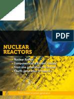 cea-nuclear-reactors.pdf