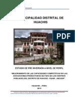 PIP PAPA HUACHIS.pdf