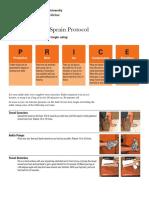 Ankle-Sprain.pdf