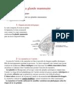 6- La Glande Mammaire ( Dr. Touil ) v 2014-2015