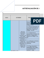 AUTOEVALUACIÓN-ESTANDARES-MINIMOS-SG-SST.xlsx