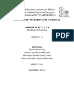 Practica 11 Fisiología de Levaduras