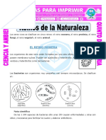 Ficha-Reinos-de-la-Naturaleza-para-Quinto-de-Primaria.pdf