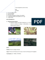 MATERIALE1 biotecnologia.docx