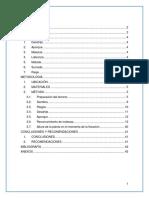 INFORME FINAL DE AGROTECNIA.docx