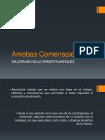 Amebas_Comensales.pptx