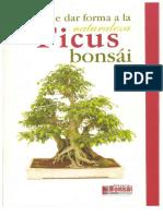 ficus bonsai.pdf