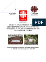 Estudio_de_Viabilidad_Caritas_MDD_ FINAL_0.1_ FLOV.docx