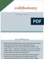 Vesicolithotomy.ppt
