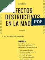 Efectos Destructivos de La Madera (1)