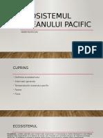 Ecosistemul-oceanului-pacific.pptx