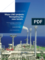 major-LNG-projects-navigating-new-terrain.pdf
