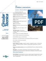 Parica circular técnica embrapa.pdf