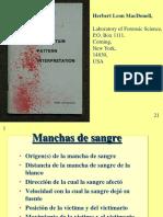 17. bloodspatter.pdf