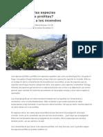 ¿Qué Son Las Especies Pirófilas o Pirófitas_ Adaptaciones a Los Incendios