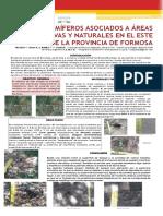 Mamíferos asociados a Áreas Productivas y Naturales en el Este de la provincia de Formosa Jornadas Cs y Tec Poster