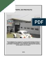 Perfil Centenario de proyecto.docx