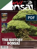 Esprit_Bonsai_International__October-November_2017.pdf
