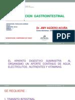 Funcion Gastrointestinal