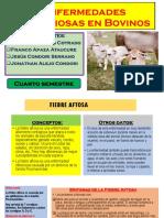 emfermedades imfecciosas en bovinos.pptx