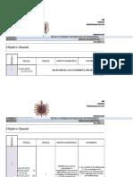Formato de Planificación de Sistemas de Informacion Gerencial AGM(Periodo I-2019) (1) (1)