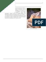 Qumrán - WKPD