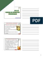 CAP_I.pdf