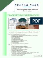 Presentation Scesar