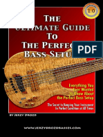 Ultimate Guide Bass Setup.pdf