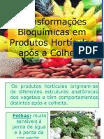 Bioquimica_aplicada_aula_10_vegetais.ppt