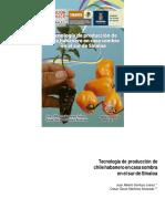 Tecnología de producción de chile habanero en casa sombra en el sur de Sinaloa-convertido.docx