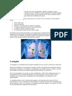 Enfermedades Que Afectan Al Sistema Respiratorio