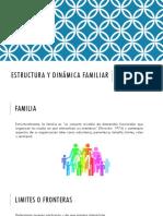 Estructura y Dinámica Familiar