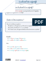 lecon-pluriel-adjectifs.pdf