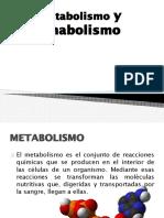 Expo Catabolismo y Anabolismo