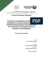 MIA_TFM_Irene_Martinez.pdf