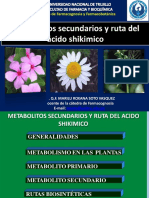 381962840-CLASES-DE-METABOLITOS-SECUNDARIOS.pdf