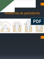 anatomia do periodonto.pdf