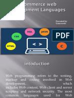 Web Development Programming Language