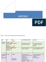 05. Amebas Intestinales 2018