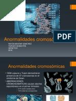 ANORMALIDADES CROMOSOMICAS
