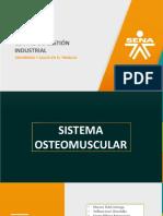 Sistema Músculo Esqueletico Listo