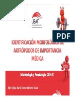 Artrópodos.pdf