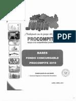 Bases Fondo Consursable PROCOMPITE 2019.pdf