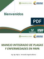 1. Presentación MIP Fedepapa.ppt