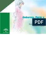 Junta de Andalucía- Embarazo- parto- puerperio.pdf
