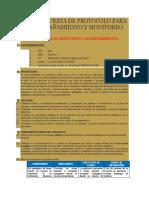 Una Propuesta de Protocolo Para El Acompañamiento y Monitoreo 2015