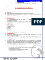 Semiologico de Pancreas